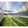 Zahradní skleník z polykarbonátu Gardentec Herbus interiér