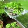 Zahradní skleník z polykarbonátu Gardentec F